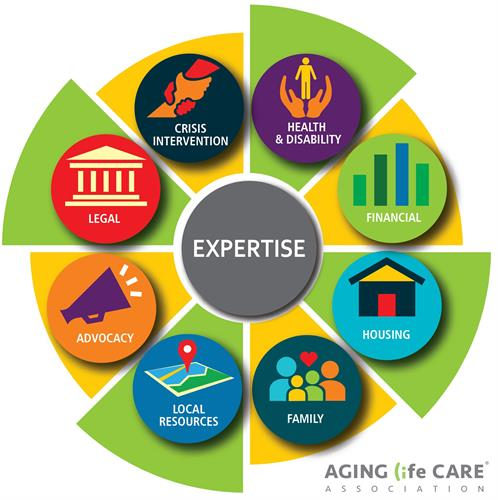 Our Care Manager holistic approach across 8 core areas.