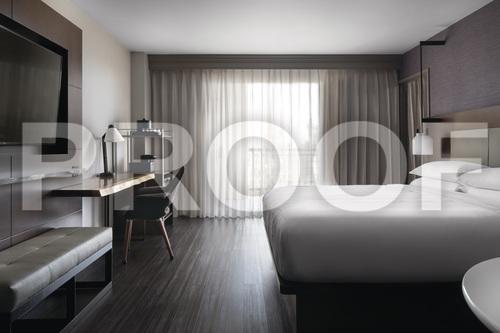 Gallery Image King_Guestroom.jpg