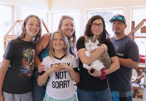 Happy Cat Adoption
