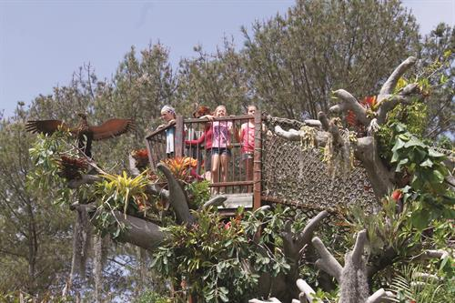 Kids enjoy playing in our Hamilton Children's Garden Tree House