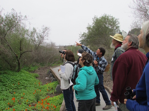 Conservancy Birding Tour