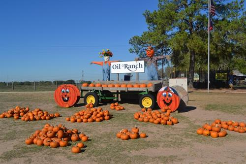 Pumpkin Patch & Scarecrow festival Coming in October