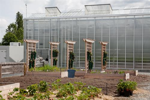 Langley campus Horticulture farm