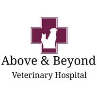Above & Beyond Veterinary Hospital