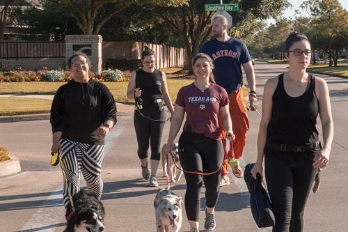 Our monthly dog walk/jog every last saturday of every month
