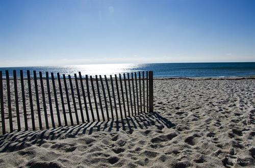 Hundreds of Gulf Coast Beach Houses and Condos