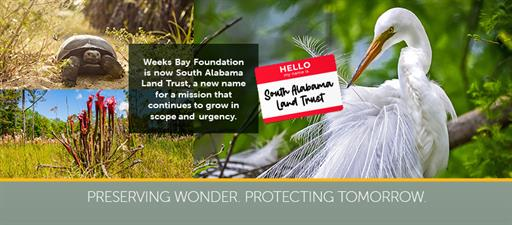 South Alabama Land Trust (formerly Weeks Bay Foundation)