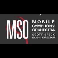 Mobile Symphony Summer Programs 2021 Announcement!