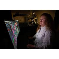 USA College of Medicine Researcher Seeks to Determine Root Cause of Alzheimer's Disease