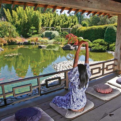 A quiet place to meditate overlooking our Koi pond