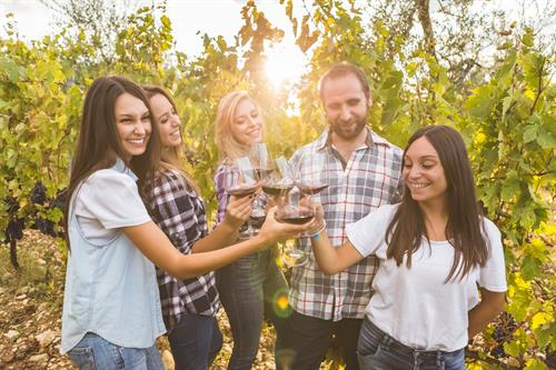 Stay near the winery of your choice!