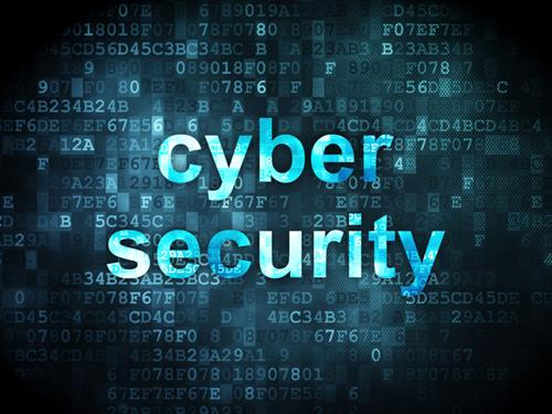Local Proactive Cyber Security Services
