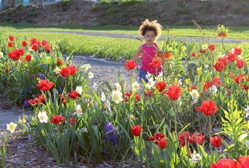 Enjoying a beautiful spring day