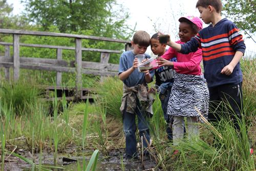 Field trips at ICG make learning fun