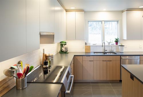 Danish Kitchen Cabinets