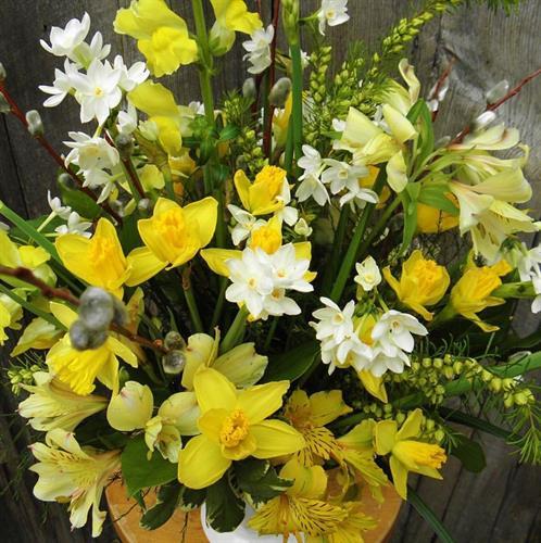 Gallery Image Blooming_5.jpg