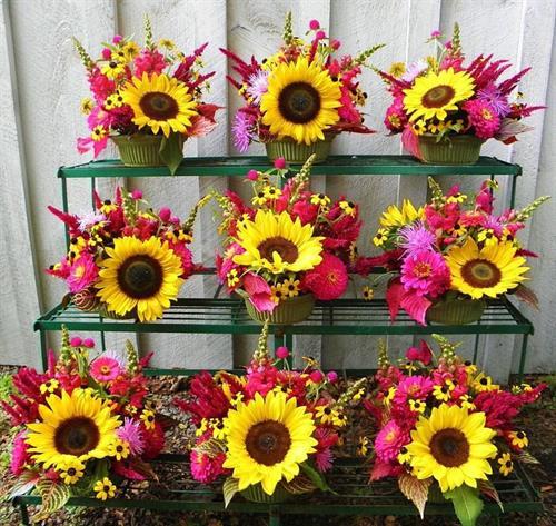 Gallery Image Blooming_6.jpg