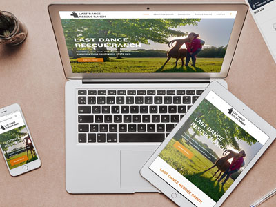 Responsive Web Design and Mobile Friendly Websites