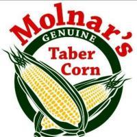 Molnar's Taber Corn & Pumpkins
