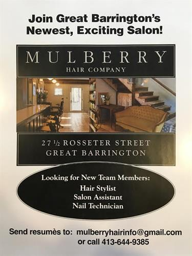 Gallery Image Mulberry_AD.jpg