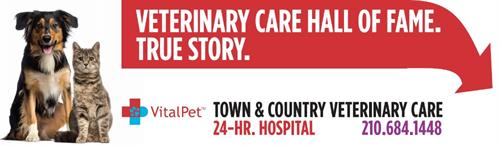 Outdoor Billboard - Town & Country Veterinary Care - San Antonio, TX #Outdoor #Design #Copywriting
