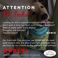 (Vet Techs Wanted!) Pet Sitter/Dog Walker