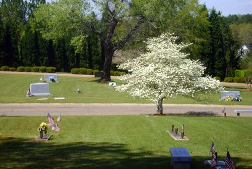Gallery Image Cemetery_2.jpg