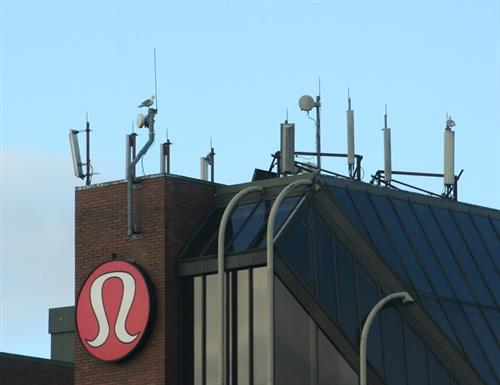 4G cell antennas on office building - rent target  $40,000