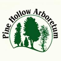 Yoga at the Pine Hollow Arboretum