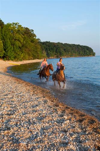 Horseback Riding at Land Between the Lakes