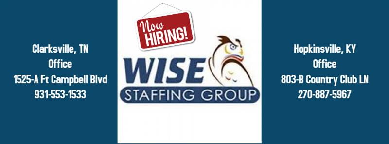 Wise Staffing Group