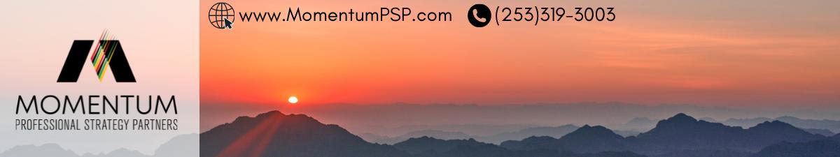 Momentum Professional Strategy Partners