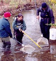 Water quality monitoring in Coffee Creek