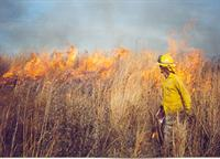 Ecologist Steve Barker with Cardno-JF New during a prescribed burn at Coffee Creek