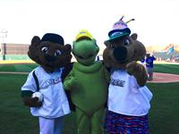 Scrappy and his pals Rusty the Railcat and Rascal.