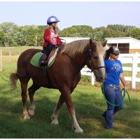 Reins of Life, Inc. To Offer New Volunteer Training