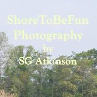 Photographer SG (Steve) Atkinson Publishes Chesapeake Country Roads Calendars