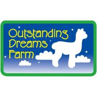 11th Annual Alpaca Festival Offers Fun for the Whole Family