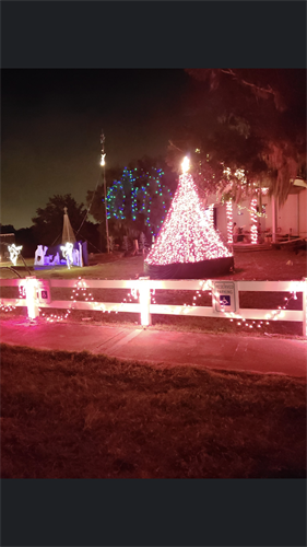 Annual Christmas Light Display at the Park