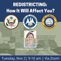 Redistricting: How will it affect you?