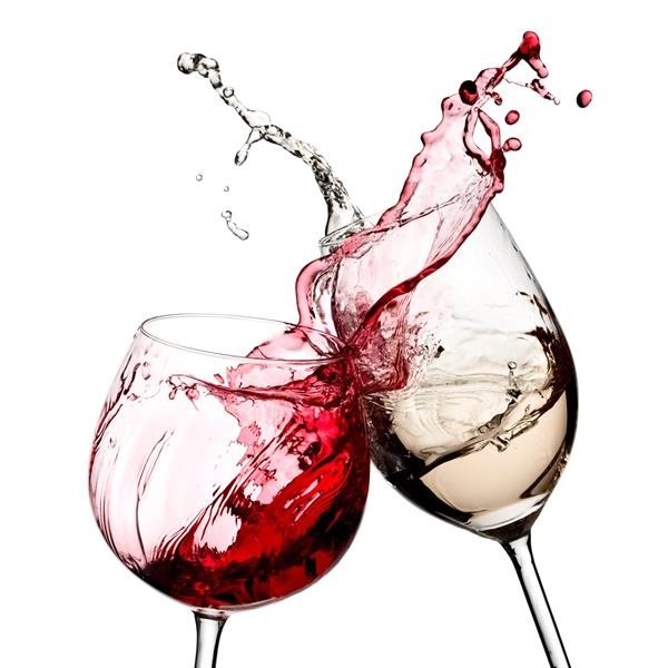 Salud! Wine Bar-Event Center-Wine Storage