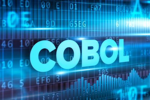 Gallery Image cobol_programmer.jpeg