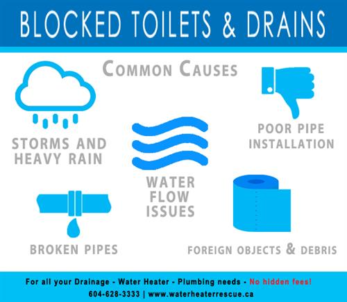Common culprits of drain blockages.