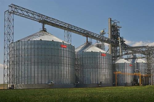 Commercial Grain Management
