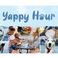Yappy Hour at Dine Out on Sheffield
