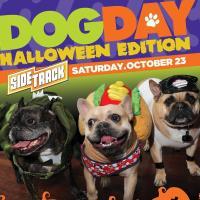 Dog Day Halloween Edition