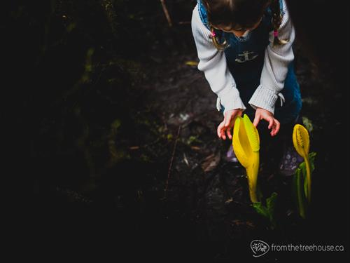 Documenting your family adventure in the Northwest with beautiful photos