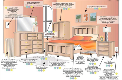 Treatment areas for Bed Bugs