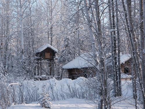 Gallery Image christmas_Card.jpg