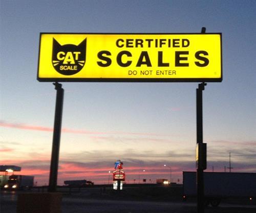 Cat Scale (High-Rise)